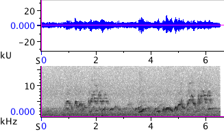 Waveform & Spectrogram of Swainson's Thrush